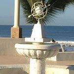 Photo of Occidental Nuevo Vallarta