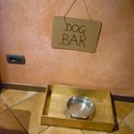 As a dog lover I loved this idea :)