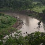 Over the Mara River