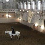 Φωτογραφία: Levend Paardenmuseum De Hollandsche Manege