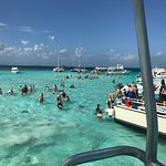 Stingray City照片