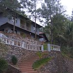 Built on a small hillock this hotel stands out for the scenic beauty that is on offer.