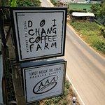 ภาพถ่ายของ Doi Chang Coffee Farm