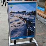 Bilde fra Arctic Adventure Tours