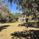 Foto de Hopsewee Plantation