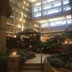 Embassy Suites by Hilton Atlanta - Buckhead Foto