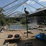 Photo of Florida Keys Wild Bird Rehabilitation Center