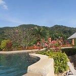 Photo de Pacific Club Resort