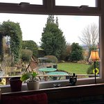 Garden view from the small conservatory