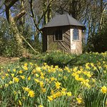 Woodland Summer House in Spring.