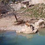 Photo de Terra Natura