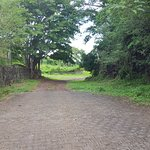 the road to nowhere, trying to find the unmarked butterfly reserver