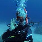 Freeport Dive