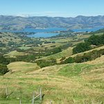 Photo de Banks Peninsula
