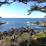 Foto de Wild Pacific Trail