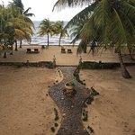 Foto di Coconut Row
