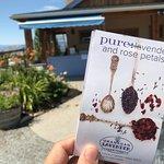 Okanagan Lavender & Herb Farm Foto