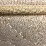 Bed bug splatters