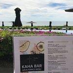 Bild från JW Marriott Los Cabos Beach Resort & Spa