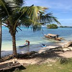 2 SUPs to rent for exploring the area nearby on your own-the mangrove, snorkeling or just for fu