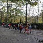 Photo de Parc de Bruxelles (Warandepark)