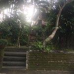 Foto de Kebun Indah