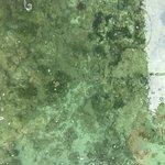 Bilde fra Coral Sanctuary