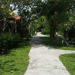 صورة فوتوغرافية لـ Peneeda View Beach Hotel