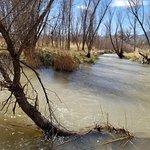 Verde River Trail