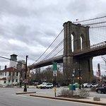 Visita guiada Brookling Bridge con Nydia