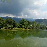 Beautiful Taiping Lake Garden