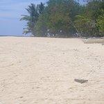 Pandan Island Resort Photo
