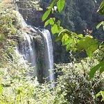 ภาพถ่ายของ Tad Yuang Waterfalls