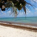 Foto de Mayan Beach Garden