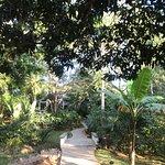 Photo of Ka'ana Resort