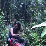 Фотография Mentawai Islands
