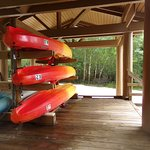 One end of boardwalk you reach the canoe rental storage, dock area. 12 ft gator near water edge