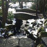 Photo of Endcliffe Park