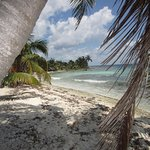 Laughing Bird Caye