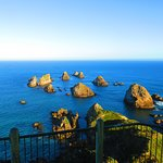 Photo of Nugget Point/Tokata Walks