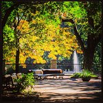 Parc Lafontaine (please vote of you like picture)
