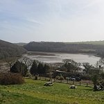 Stunning view of the Helford River from the meadow area of the sanctuary