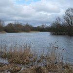 Linford Lakes in March
