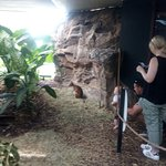 Photo de Cairns ZOOM and Wildlife Dome