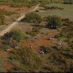 au milieu du domaine plusieures centaines d'hectares à disposition.