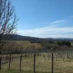 Would like to see the winery when there is more green due to it being Spring. Still nice scenery