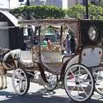 Famous Tour Rides only in Guadalajara, Jalisco Mexico