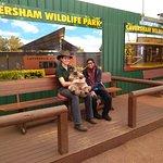 Zdjęcie Rockingham Wild Encounters