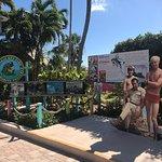 Foto de Miami Seaquarium