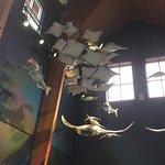 North Carolina Aquarium on Roanoke Island